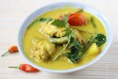 Culinária malaio tradicional de Ayam Masak Lemak- imagem de stock royalty free