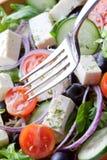 Culinária mediterrânea Imagens de Stock Royalty Free