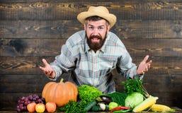 Culinario colorido comida estacional de la vitamina Fruta y verdura ?til Festival de la cosecha Comida natural org?nica Feliz fotografía de archivo