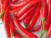 Culinary background. Red chili peppers closeup. Top view. Selective focus stock photography