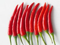 Culinary background. Red chili peppers in a row. Top view. Selective focus royalty free stock photography