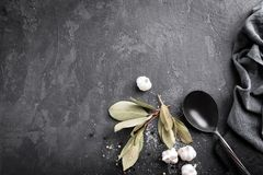 Culinary background with spices. And spoon Royalty Free Stock Photo