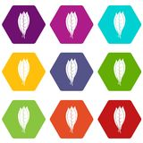 Culinary bay leaves icon set color hexahedron Stock Photo