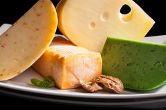 Culinary cheese variation close up. Royalty Free Stock Image