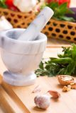 Culinary herbs stock photography