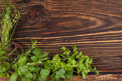Culinary herbs background with copy space. Stock Photo