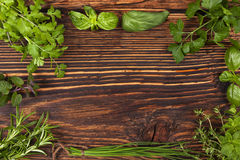 Culinary herbs background with copy space. Royalty Free Stock Image
