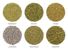 Culinary herbs for Herbes de Provence, herbal circles stock photo
