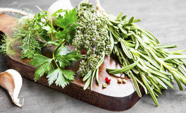 Culinary Herbs with Parsley,Dill,Rosemary and Thyme Royalty Free Stock Image