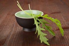 Culinary herbs. Rocket. royalty free stock photos