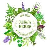 Culinary herbs round emblem Stock Photo