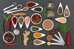 Culinary Herbs and Spices Royalty Free Stock Photo