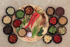 Culinary Herbs and Spices Stock Photo