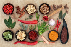 Culinary Herbs and Spices Stock Image