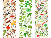 Culinary herbs and spices organised in three ribbons Royalty Free Stock Image