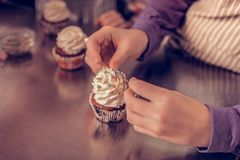 Top view of a beautiful delicious cupcake royalty free stock photography