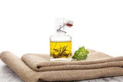 Culinary olive oil. Stock Photos