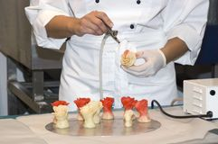 Culinary products. Manufacturing of culinary products at restaurant Stock Photos
