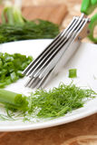 Culinary scissors for chopping greens Royalty Free Stock Photos