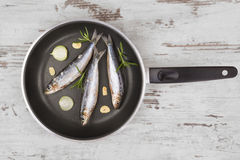 Culinary seafood background. Royalty Free Stock Photo