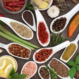 Culinary Spice and Herb Seasoning Stock Image
