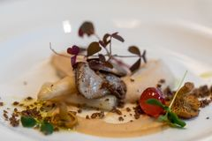 Culinary work of art.Foie gras and mushrooms. A feast for the eyes and palate.  royalty free stock photography