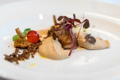 Culinary work of art.Foie gras and mushrooms. A feast for the eyes and palate. Culinary work of art.Foie gras and mushrooms. A feast for the eyes and palate stock image