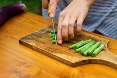 Culinary workshop. Vegetable salad Stock Images