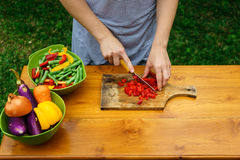 Culinary workshop. Vegetable salad Royalty Free Stock Images