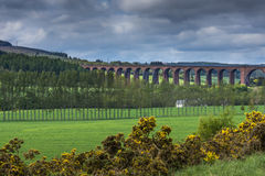 Culloden train viaduct cuts through landscape. Stock Photography