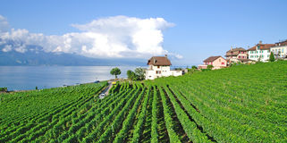 Cully,Lake Geneva,Switzerland Stock Images