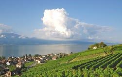 Cully,Lake Geneva,Switzerland Royalty Free Stock Image