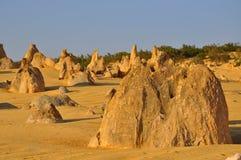 Culmini: Formazioni del calcare in Australia occidentale Immagine Stock