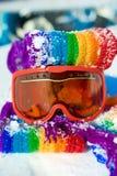Óculos de proteção do esqui Imagem de Stock Royalty Free