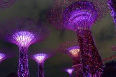 CULTIVA UN HUERTO POR LA BAHÍA/EL SINGAPUR, el 30 de abril de 2018 - la vista de la señal de Supertree en la noche fotos de archivo