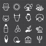 Cultivando ícones e o fundo preto Fotografia de Stock Royalty Free