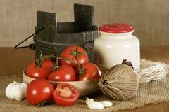 Cultivando bio produtos, tomates Imagem de Stock