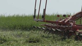Cultivando a ceifeira do combaine que move-se no campo agrícola para colher a terra Maquinaria agrícola em colher o campo filme