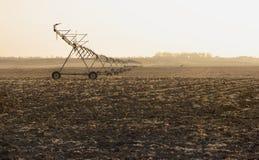 Cultivando a irrigação Imagem de Stock Royalty Free