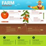 Cultivando o crescimento vegetal natural orgânico amigável de Infographics Eco cultive a bandeira da produção com espaço da cópia ilustração stock