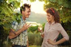 Cultivando os pares que bebem um vidro do vinho após a colheita Fotografia de Stock Royalty Free