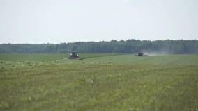 Cultivant des moissonneuses de combaine se déplaçant sur le champ agricole pour moissonner la terre Machines agricoles sur mois banque de vidéos