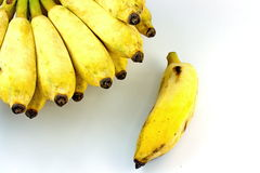 Cultivate banana on white background Royalty Free Stock Photo