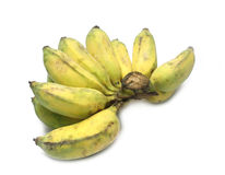Cultivate bananas, yellow bananas on isolate white background. Stock Image