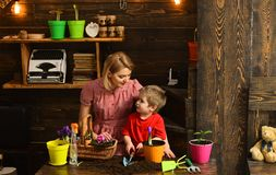 Cultivate concept. Mother and son cultivate flower in pot. Mother and child cultivate potted flower. Cultivate the soil.  stock photo