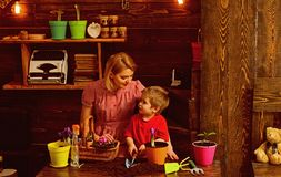 Cultivate concept. Mother and son cultivate flower in pot. Mother and child cultivate potted flower. Cultivate the soil.  royalty free stock photo