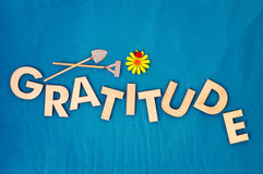 Cultivate Gratitude Concept With Wooden Capital Letters. Top view of capital letters made of wood spelling the word gratitude on light blue background with stock photography
