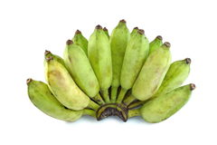Cultivate green banana isolate white background Stock Image