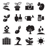 Cultivate & Plant Grow icons set. Cultivate & Plant Grow icons set Vector illustration Graphic Design Royalty Free Stock Images