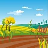 Cultivated agriculture field, rural landscape vector Illustration. Web design Stock Image